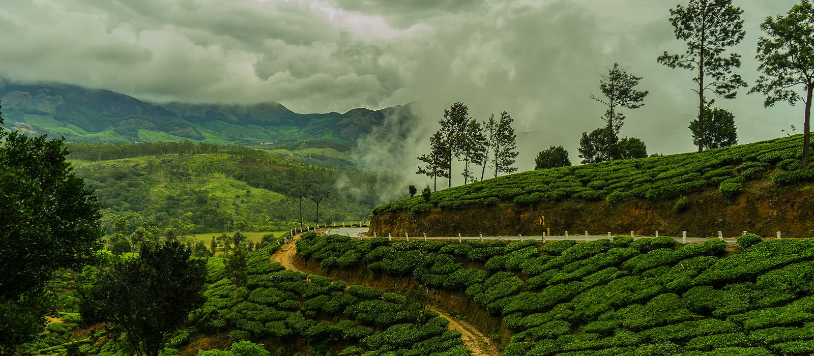 Kerala's Tropical Treasures Uncovered Tour Trip 3