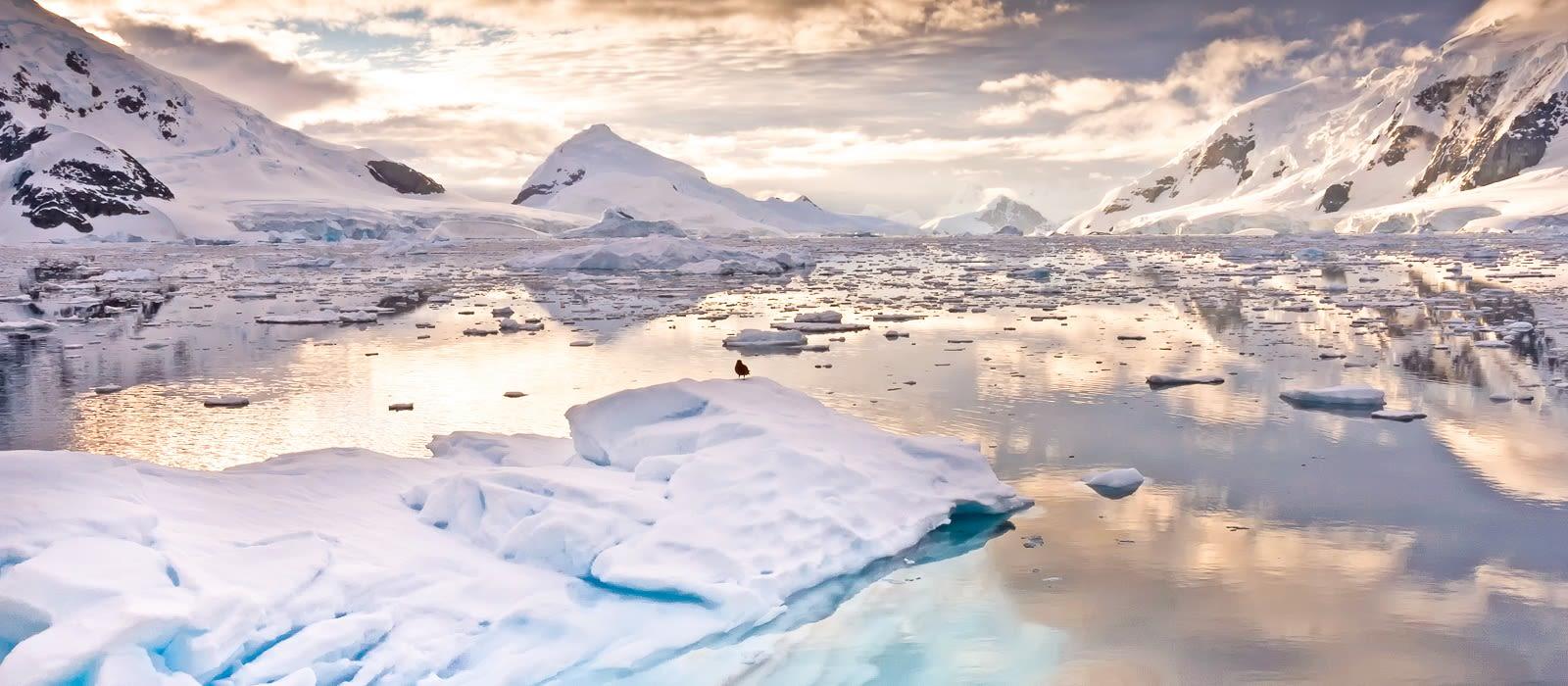Reiseziel Antarktis Antarktis