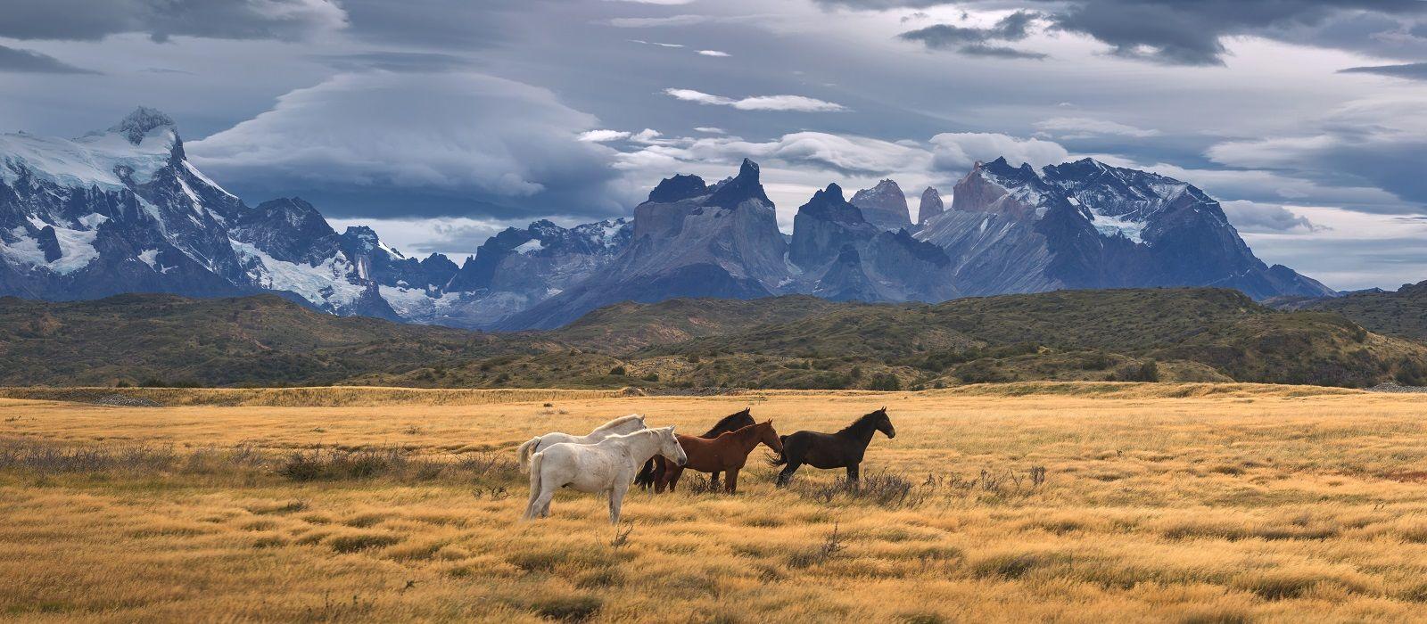 Chile & Antarktis: Sagenhafte Schneelandschaften Urlaub 3