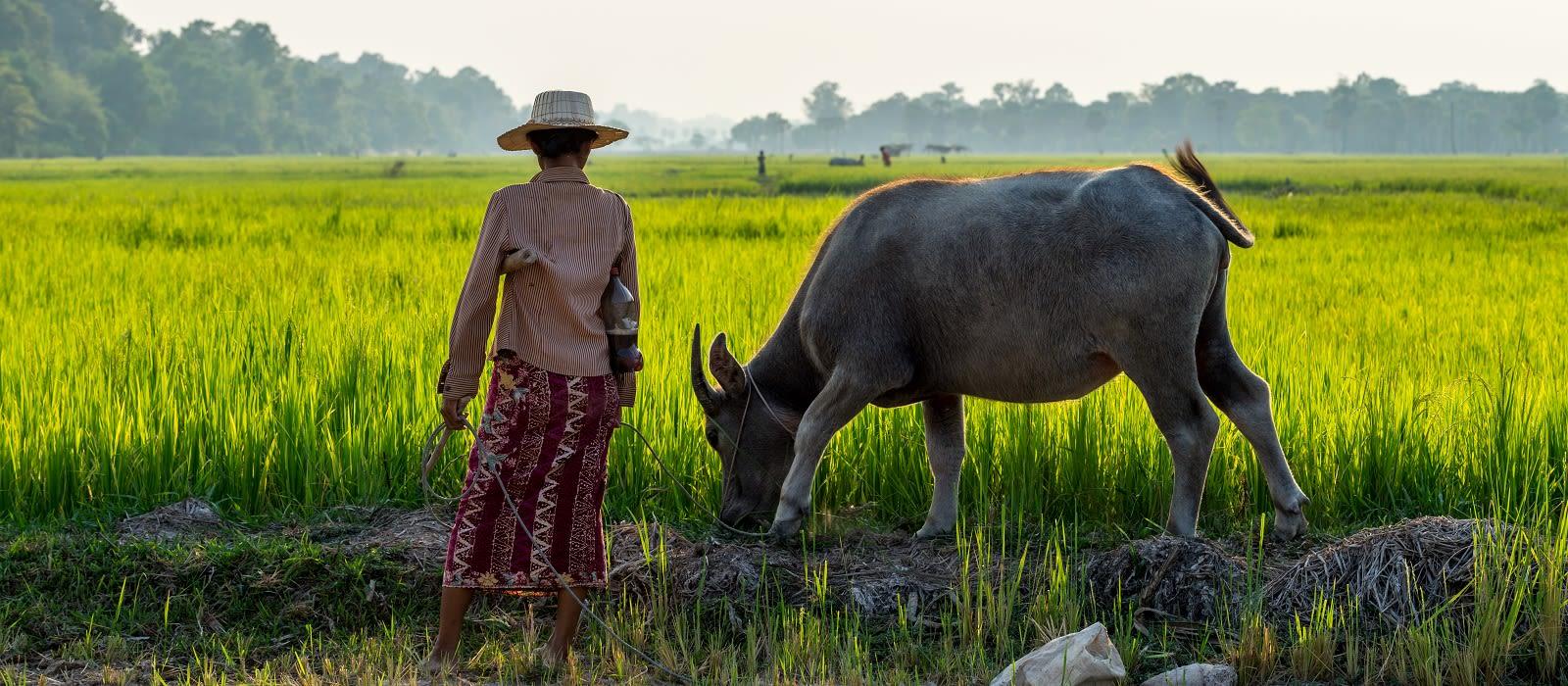 Classic Cambodia Tour Trip 4