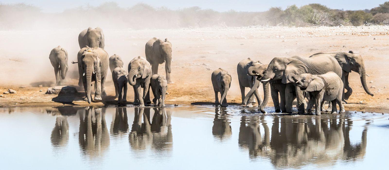 Classic Namibia Tour Trip 2