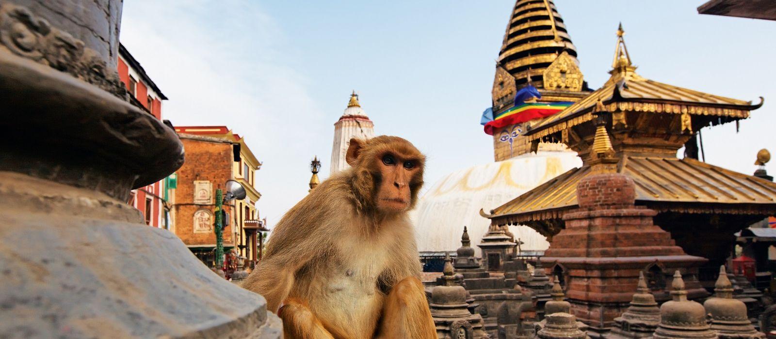 Höhepunkte von Nepal & Bhutan Urlaub 7