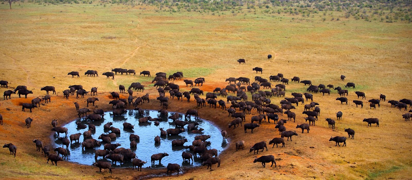Kenia: Abseits bekannter Wege Urlaub 5