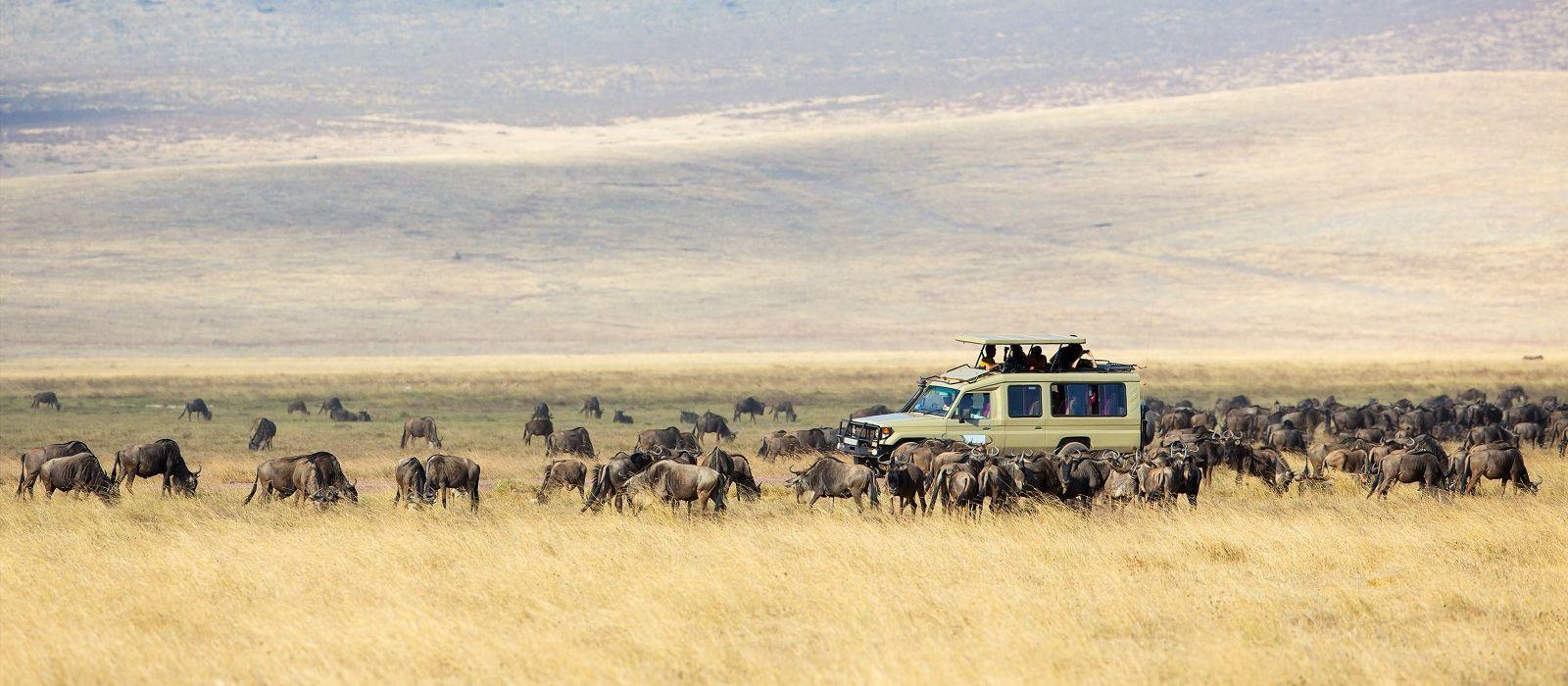 Tansania: Safari & authentische Einblicke Urlaub 3