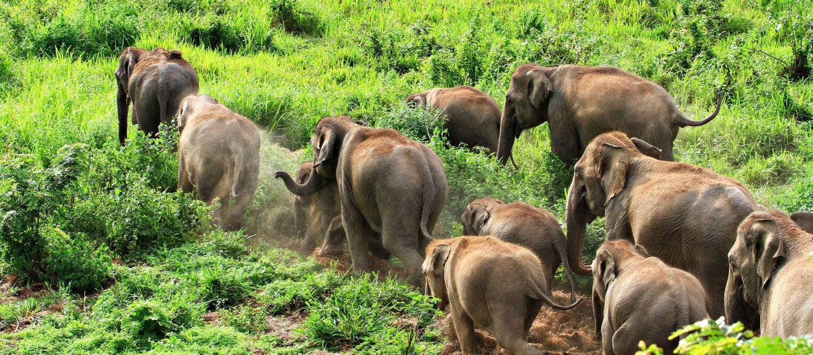 Thailand abseits ausgetretener Pfade Urlaub 5