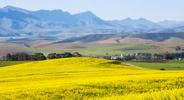 Reiseziel Overberg Südafrika