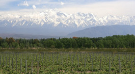 Reiseziel Mendoza Argentinien