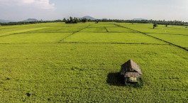 Reiseziel Palopo Indonesien