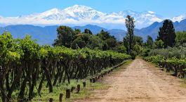Destination Mendoza Argentina