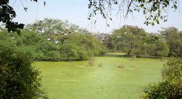 Destination Bharatpur North India