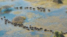 Destination Gaborone Botswana