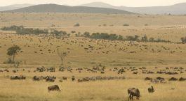 Reiseziel Suguta-Tal & Mount Nyiro Kenia