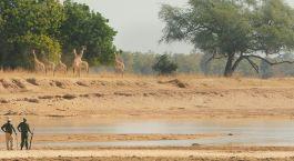 Reiseziel Luambe Nationalpark Sambia