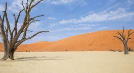 Reiseziel Mudumu Park Namibia