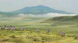 Reiseziel Saadani Tansania