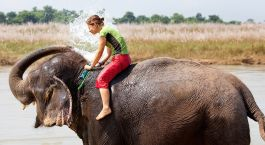 Destination Chitwan Nepal
