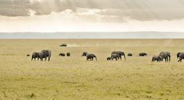 Destination Migori Kenya