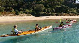 Destination Paihia (Bay of Islands) New Zealand
