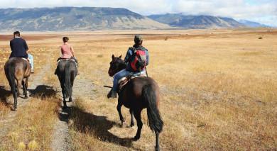 Empfohlene Individualreise, Rundreise: Südamerika Rundreise: Die Schönheit des Subkontinents