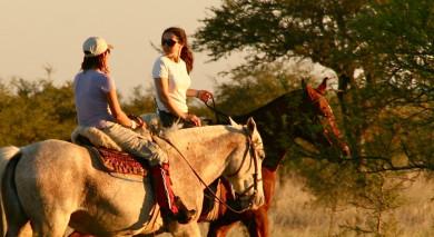 Example private tour: Wildlife Wonders of Argentina