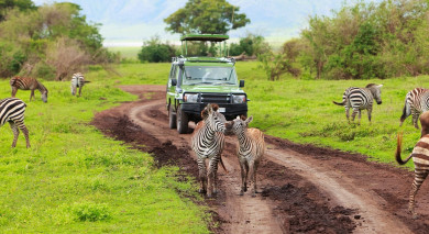 Example private tour: Highlights of Africa