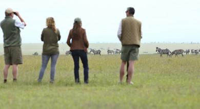 Example private tour: Kenya: Cultural Encounters and Wildlife Safari