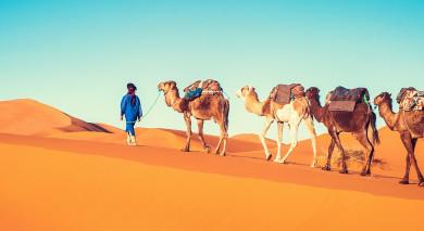 Empfohlene Individualreise, Rundreise: Marokko: Geschäftige Souks, majestätische Gipfel & goldene Sahara