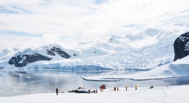 Empfohlene Individualreise, Rundreise: Episches Antarktis-Abenteuer – Falklandinseln und Südgeorgien