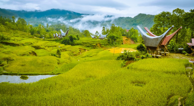 Example private tour: Ancient Cultures and Bali