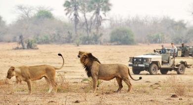 Empfohlene Individualreise, Rundreise: Namibia, Sambia & Malawi: Selbstfahrer-Reise via Caprivi