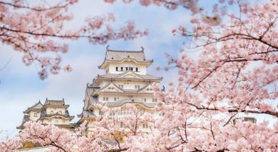 Example private tour: Grand Tour of Japan and Koh Samui Beach