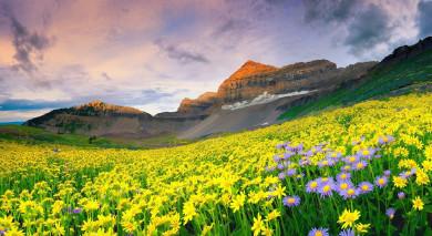 Empfohlene Individualreise, Rundreise: Südafrika & Lesotho Roadtrip: Bergwelten und wilde Strände