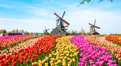 Example private tour: Amsterdam and Paris: European Romance