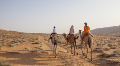 Empfohlene Individualreise, Rundreise: Roadtrip – Oman für Entdecker