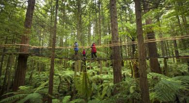 Empfohlene Individualreise, Rundreise: Neuseeland: Abenteuer im Norden