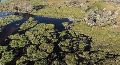 Empfohlene Individualreise, Rundreise: Magisches Botswana & lebendiges Kapstadt