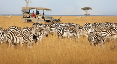 Example private tour: Kenya Safari and Zanzibar