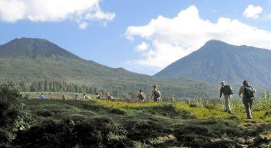 Empfohlene Individualreise, Rundreise: Ruanda Reise: Vulkane, Lake Kivu und Gorilla Trekking