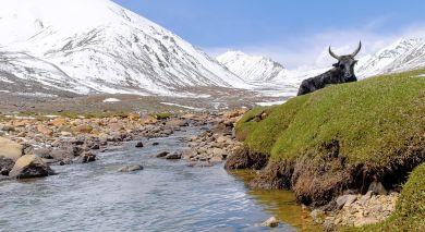 Empfohlene Individualreise, Rundreise: Nepalreise: Paläste, Tiger und Himalaya