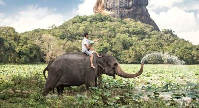 Example private tour: Sri Lanka's Wild Side & Blissful Beaches