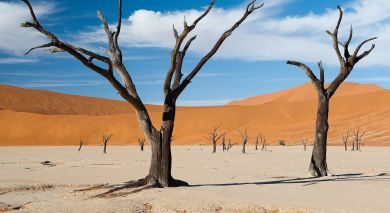 Example private tour: Wings Over Namibia, Victoria Falls and Botswana