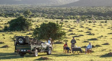 Example private tour: South Africa – Western and Eastern Cape
