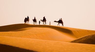 Example private tour: Oberoi Exclusive: Rajasthan's Heritage Cities and Safari