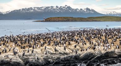Example private tour: Falls, Falklands and Antarctic Adventures