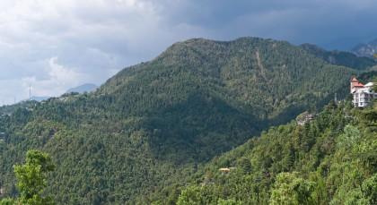 Destination Dharamsala in Himalayas