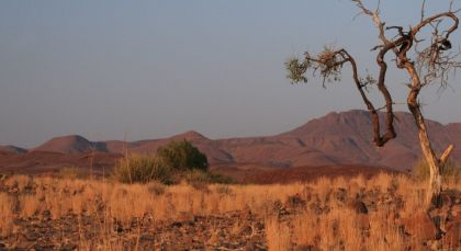 Destination Damaraland (Palmwag) in Namibia