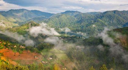 Destination Bwindi in Uganda