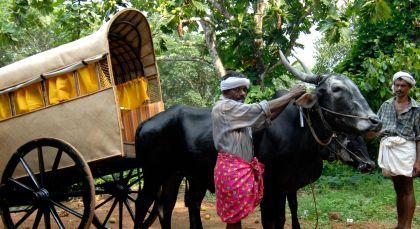 Kanam in Südindien
