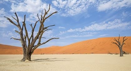 Namibia Tours in Africa