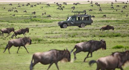Nördliche Serengeti in Tansania